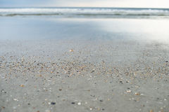 Sea beach shells blue sky sand sun daylight relaxation landscape view Royalty Free Stock Photo