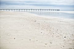 Sea beach shells and wooden bridge in blue sky  Royalty Free Stock Photos