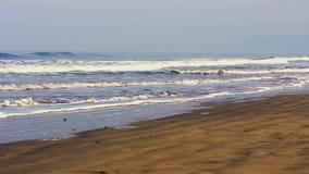 Sea - beach stock video footage
