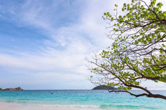 Sea and beach of Similan island in Thailand Royalty Free Stock Photography