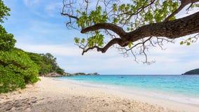 Sea and beach of Similan island in Thailand Stock Photos