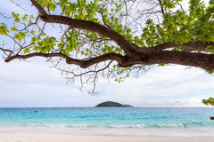 Sea and beach of Similan island in Thailand Royalty Free Stock Image
