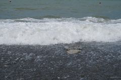 The sea and the beach in Sochi. stock photos