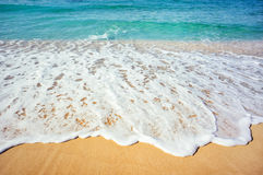 Sea beach. Soft wave of the sea on the sandy beach Stock Photography