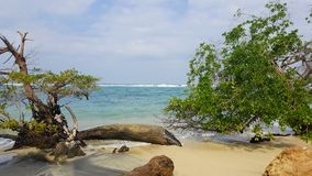 Sea and beach. View of a beach and ocean in Tayrona National Park, North Colombia Royalty Free Stock Photos