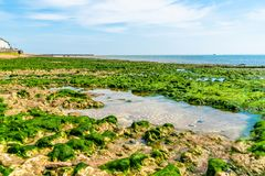 Sea and beach view in Ramsgate, Kent UK. View of beach and sea at low tide with stones covered in seaweed in Ramsgate, Kent, UK Stock Images