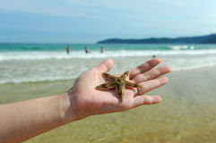 Sea beach waves, manpower and starfish Royalty Free Stock Images