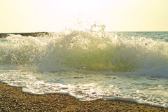 Sea beach with waves and splashes. Sea beach with waves, splashes and foam royalty free stock image