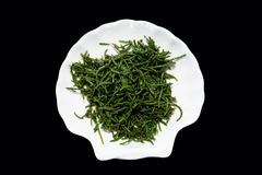 Sea beans glasswort pickleweed or Salicornia Salad on plate royalty free stock image