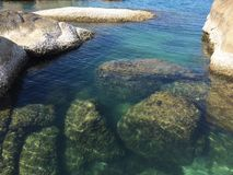 Sea. Beautiful paradise fish wild royalty free stock photography
