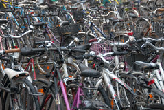 Sea of Bicycles Stock Photo