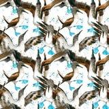 Sea bird seamless pattern. watercolor seashore background. Royalty Free Stock Images