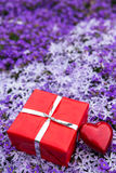 A sea of blooms with a red gift and heart Stock Image