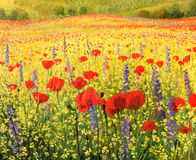Sea of Blossom. An oil painting on canvas of a colorful rural landscape with a field full of red poppies, yellow rapeseed and blue delphiniums. A sea of blossom Royalty Free Stock Images