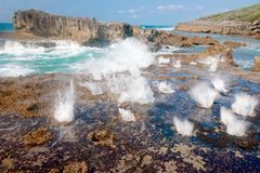 Sea blowholes Stock Image