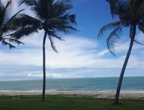 The sea. The blue sea with palm tree at Samila beach , Songkhla ,Thailand Stock Photos