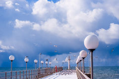 Sea and blue sky. Sea birds sitting on pier. winter beach. Winte Royalty Free Stock Photos