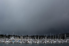 Sea of Boats. Captured in bodega Stock Photos