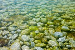 Sea-bottom Stock Photo