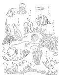 Sea bottom drawing. Sea bottom hands drawing. Coloring book page for kids. Doodle style, black and wight. Marine inhabitants Stock Photos