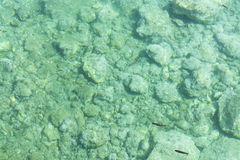 Sea bottom with small stones pebbles in crystal clear water for abstract background. Top view. Sea bottom with small stones pebbles in crystal clear water for Stock Photo