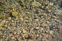 Sea bottom Royalty Free Stock Images
