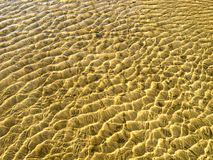 Sea bottom texture, yellow sand waves in shallow water. Yellow sand waves in shallow water Stock Photo
