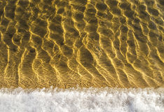 Sea bottom texture, yellow sand waves in shallow water. Yellow sand waves in shallow water with ice Royalty Free Stock Image