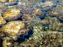 Sea bottom through the water surface Royalty Free Stock Photography