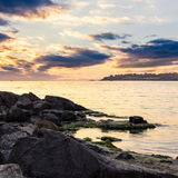 Sea boulders in the morning. Boulders with weed at sea shore in warm morning light stock images