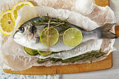 Sea bream. Fresh sea bream with lemon, lime, rosemary, salt and pink pepper on wooden cutting board and paper wrapping Royalty Free Stock Images