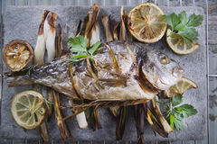 Sea bream baked in the oven Stock Images