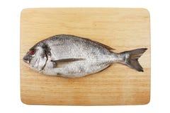 Sea bream on a board Stock Photo