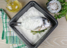 Sea bream (Dorado) baked with salt Royalty Free Stock Photo
