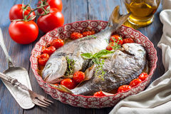 Sea bream/Dorado baked with tomato confit and a bouquet garni Stock Images
