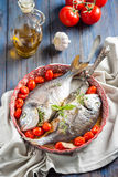 Sea bream/Dorado baked with tomato confit and bouquet garni Stock Images