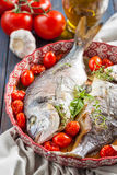 Sea bream/Dorado baked with tomato confit and a bouquet garni Royalty Free Stock Images
