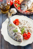 Sea bream/Dorado baked with tomato confit and rice Royalty Free Stock Image