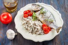 Sea bream/Dorado baked with tomato confit and rice Stock Image
