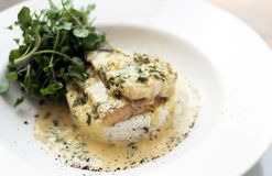 Sea bream fish fillet in creamy mustard dill and lemon sauce restaurant meal on plate. Sea bream fish fillet in creamy mustard dill and lemon sauce gourmet stock photo