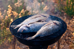 Sea Bream Fish Grilling On BBQ. In the garden stock photography