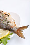 Sea Bream fish with Lemon Royalty Free Stock Images