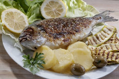 Sea bream fish with potato on white plate Stock Image
