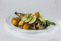 Sea bream fish with potatos Royalty Free Stock Photos