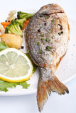 Sea Bream fish with vegetables Royalty Free Stock Photo