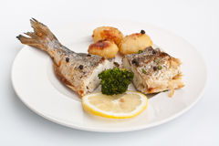 Sea bream fish with vegetables Stock Image