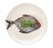 Fish in the plate Royalty Free Stock Photography