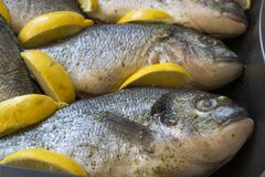 Sea bream fishes ready to be baked in oven with lemon wedges. Royalty Free Stock Images