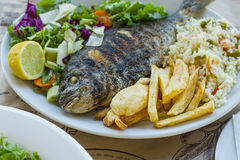 Sea bream with potato, rice and salad Royalty Free Stock Image