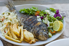 Sea bream with potato, rice and salad Royalty Free Stock Images